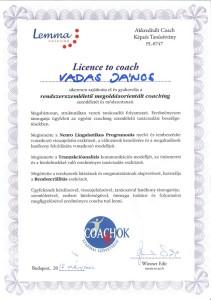 Lemma diploma